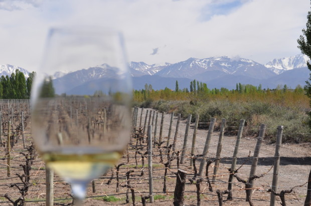 The Andes through White Stones Chardonnay