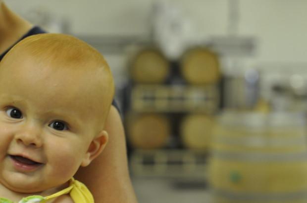 Baby Lucy, Walter Scott Wines