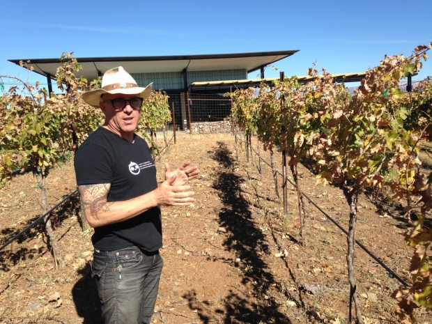 Maynard James Keenan, Southwest Wine Center