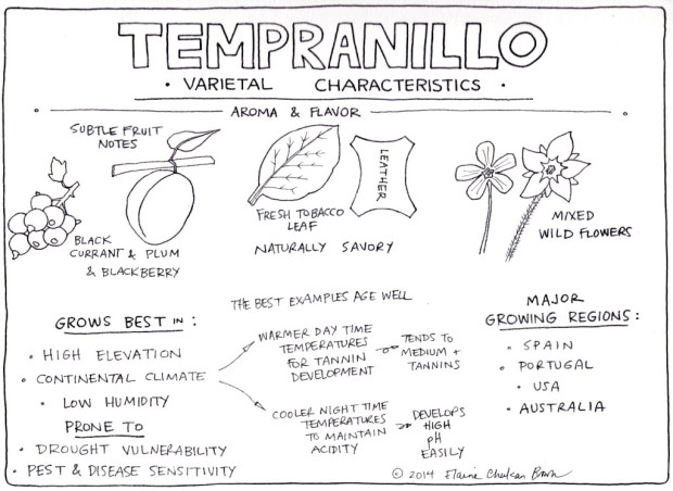 Characteristics of Tempranillo