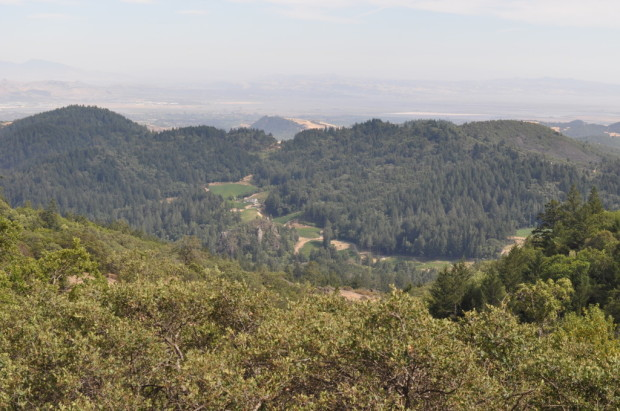Looking South from the top of Mayacamas