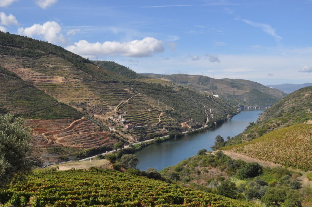 Looking West down the Douro